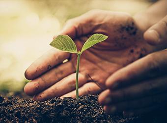 土壌浄化事業